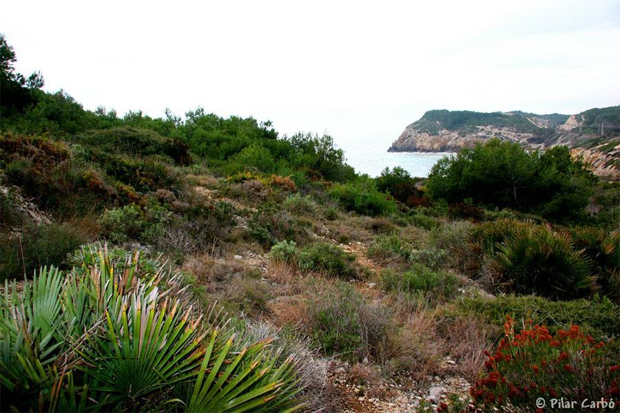 Paisaje de costa: cuevas y acantilados