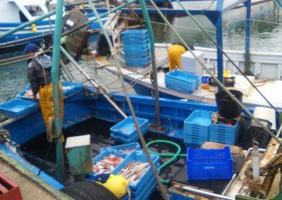 Port pesquer de Vilanova i la Geltrú