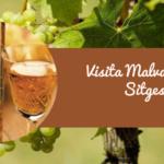Visita Malvasia de Sitges